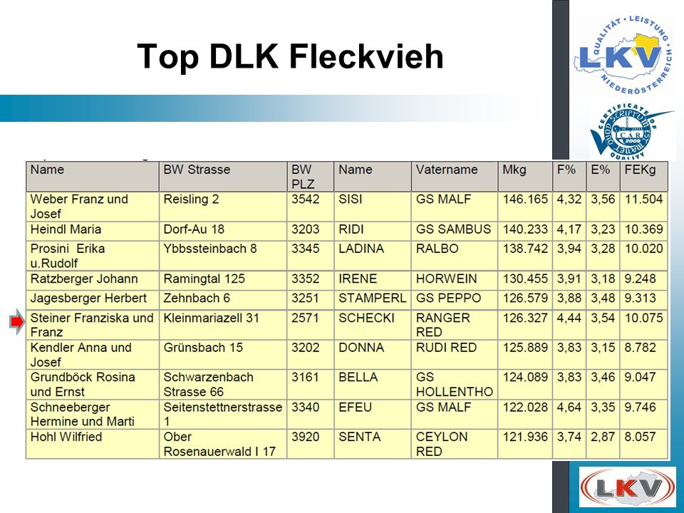 Top DLK Fleckvieh