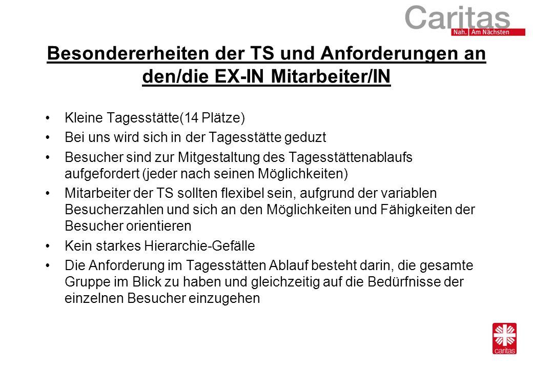 Besondererheiten der TS und Anforderungen an den/die EX-IN Mitarbeiter/IN