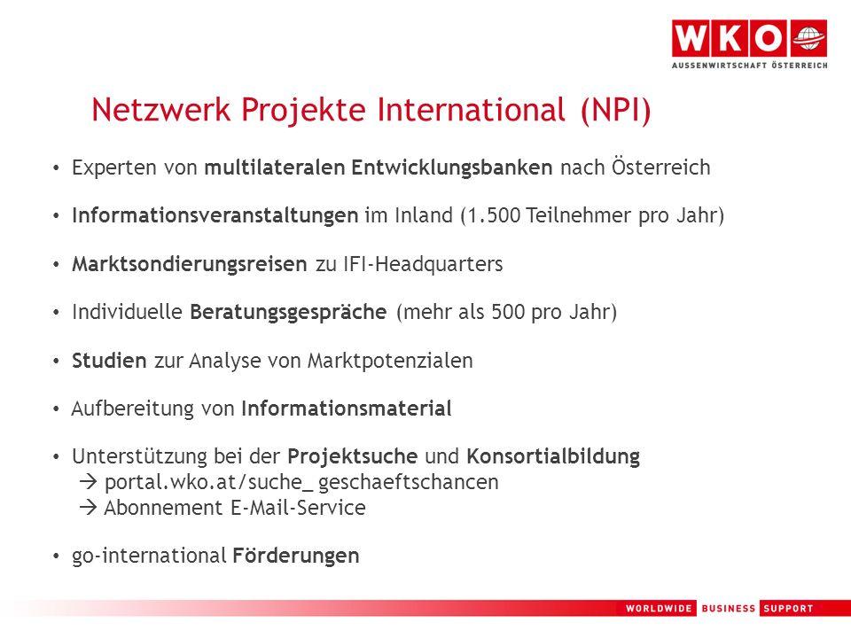 Netzwerk Projekte International (NPI)