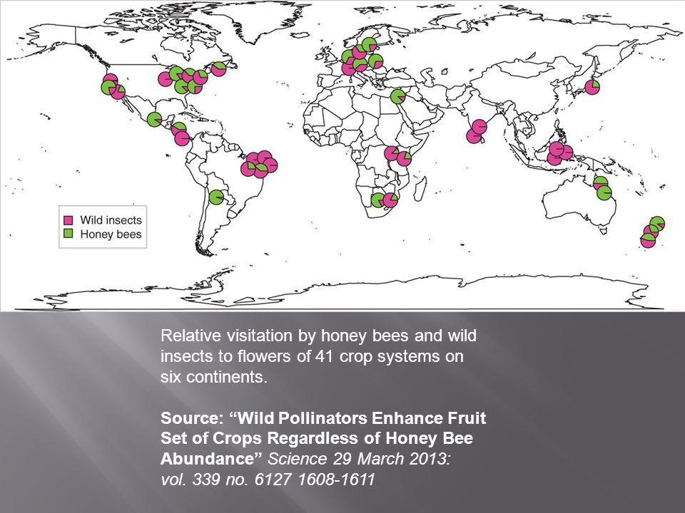 Relative visitation by honey bees and wild insects to flowers of 41 crop systems on six continents.