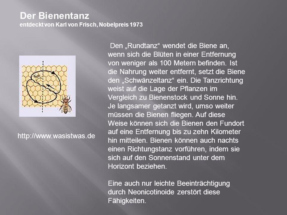 Der Bienentanz entdeckt von Karl von Frisch, Nobelpreis 1973.