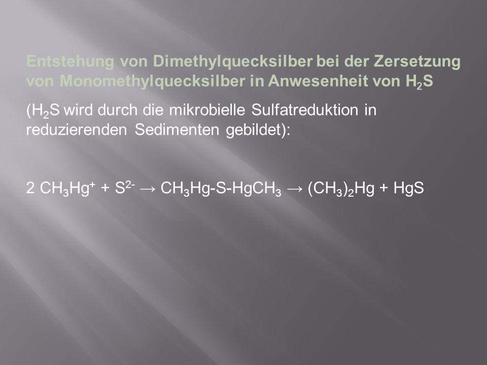Entstehung von Dimethylquecksilber bei der Zersetzung von Monomethylquecksilber in Anwesenheit von H2S