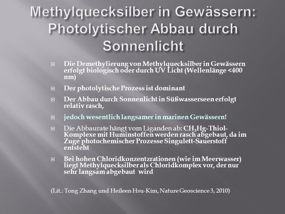 Methylquecksilber in Gewässern: Photolytischer Abbau durch Sonnenlicht