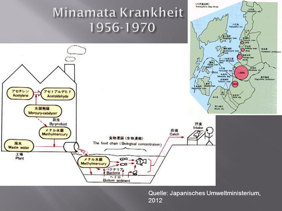 Minamata Krankheit 1956-1970 Quelle: Japanisches Umweltministerium,