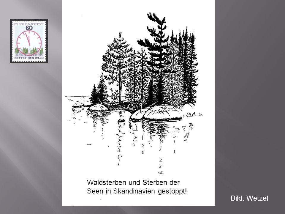 Waldsterben und Sterben der Seen in Skandinavien gestoppt!