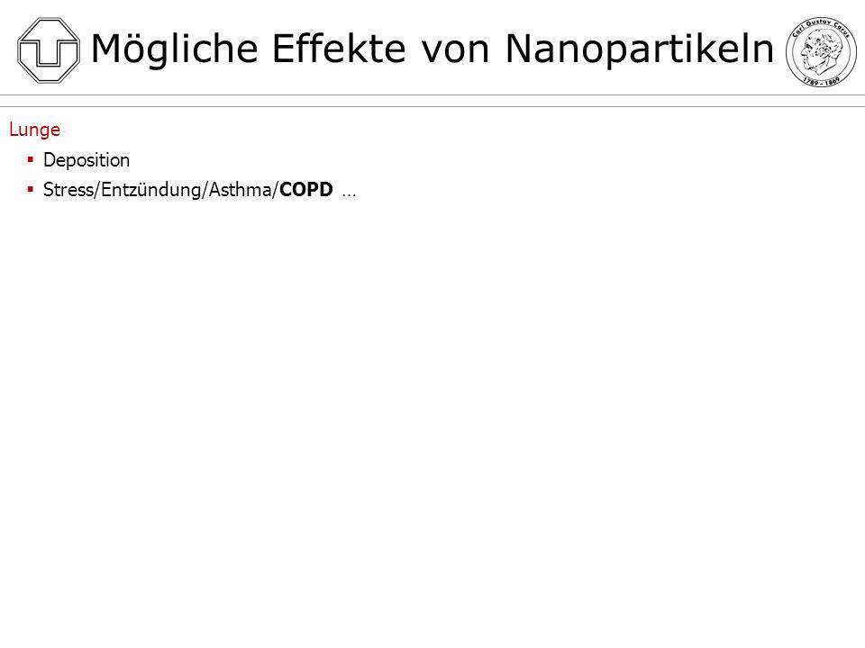 Mögliche Effekte von Nanopartikeln