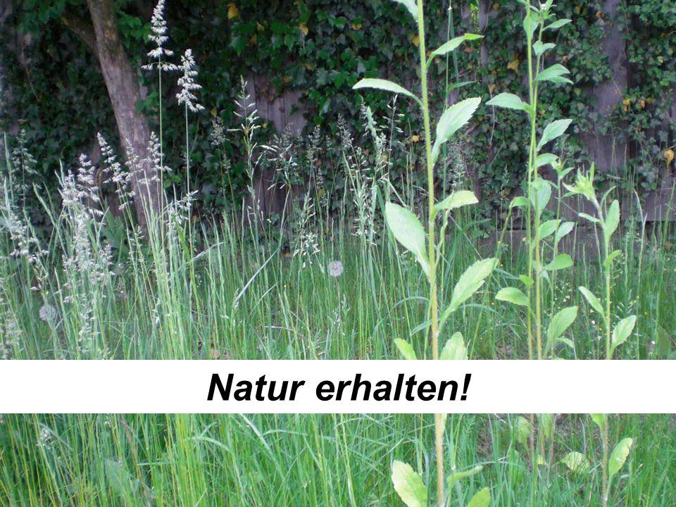 Natur erhalten!
