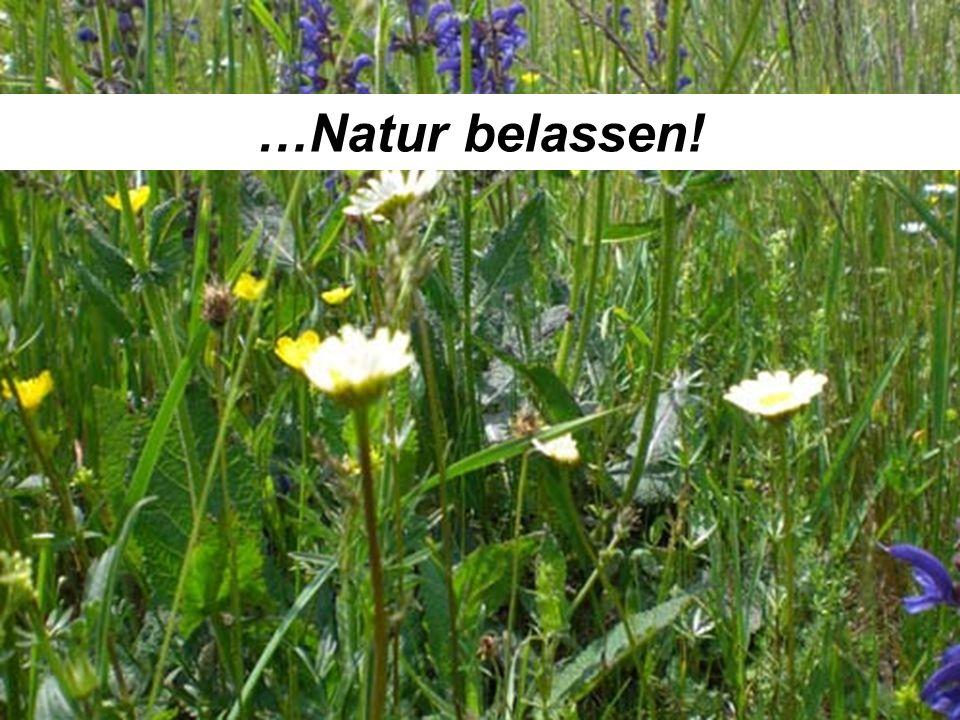…Natur belassen!