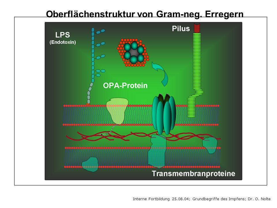 Oberflächenstruktur von Gram-neg. Erregern
