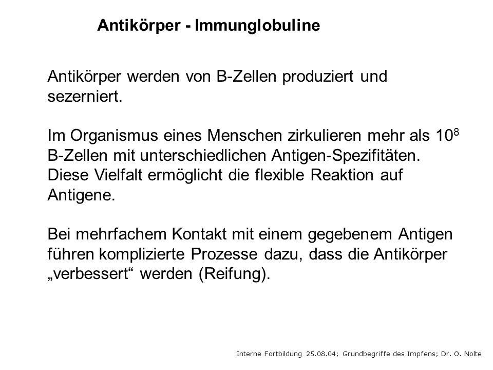 Antikörper - Immunglobuline