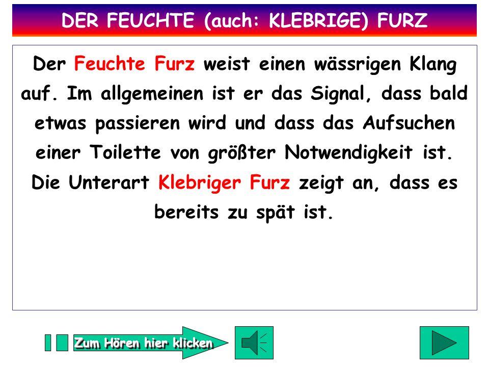 DER FEUCHTE (auch: KLEBRIGE) FURZ