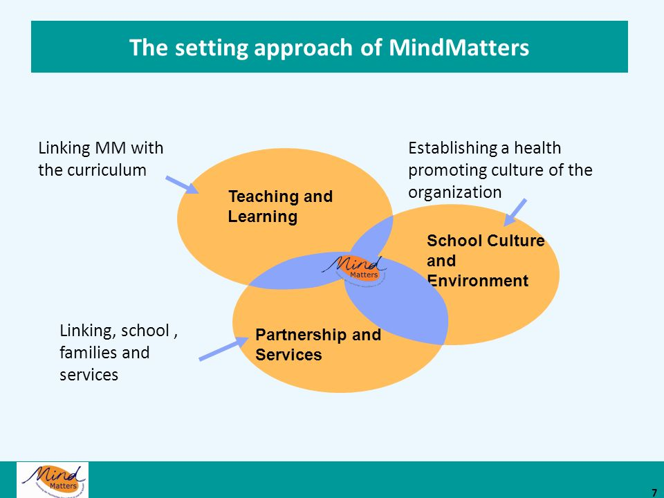 The setting approach of MindMatters
