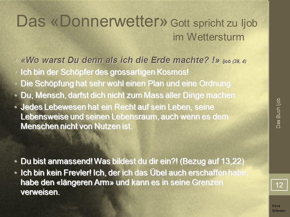 Das «Donnerwetter» Gott spricht zu Ijob im Wettersturm