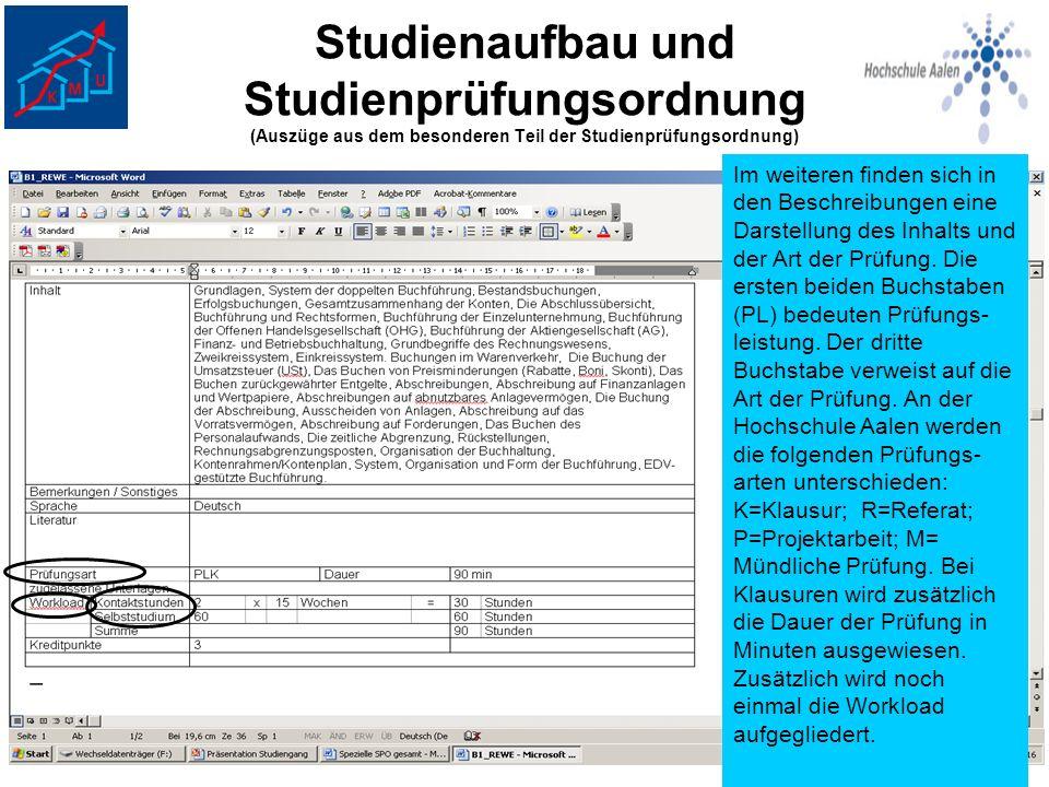 Studienaufbau und Studienprüfungsordnung (Auszüge aus dem besonderen Teil der Studienprüfungsordnung)