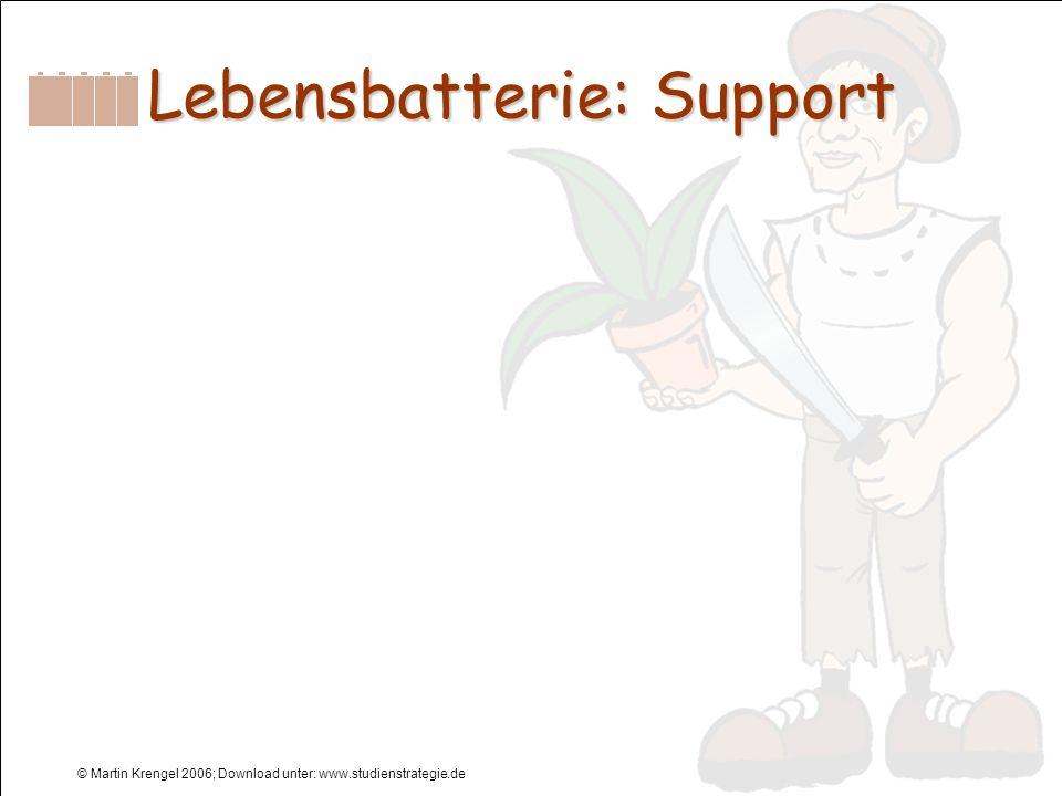 Lebensbatterie: Support