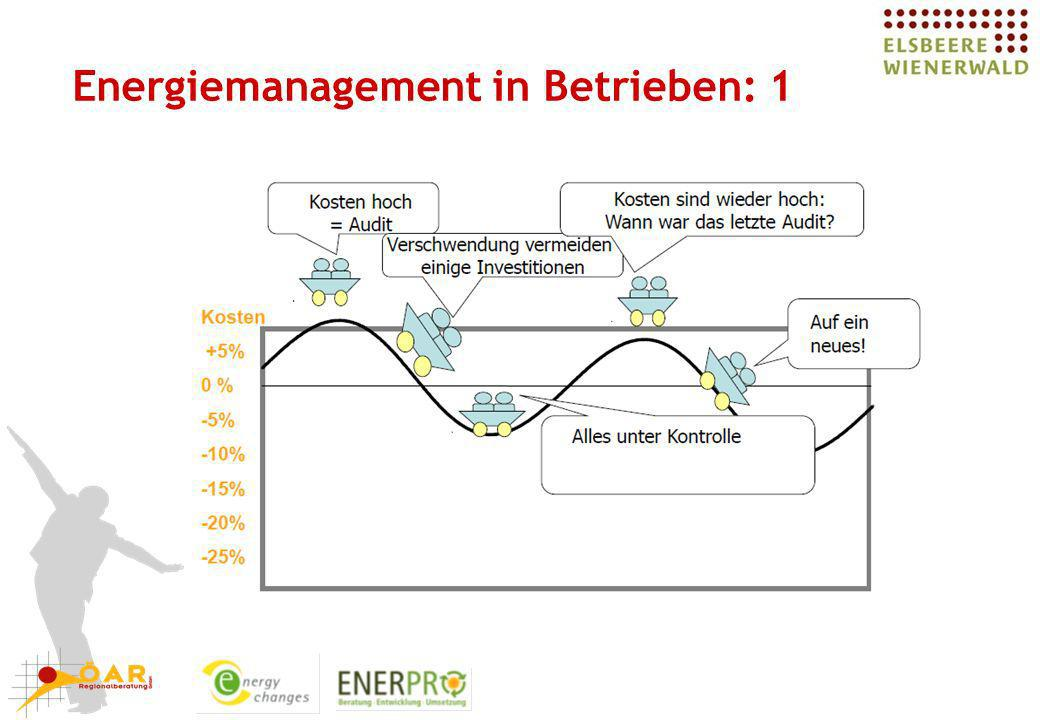 Energiemanagement in Betrieben: 1