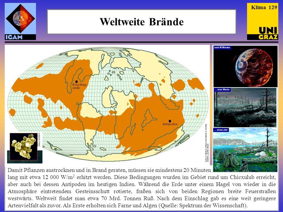 """Klima 129 Weltweite Brände. """"Der Tag an dem die Erde brannte , von A. Kring und Daniel D. Durda, SdW 2/2005."""