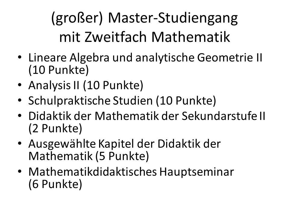 (großer) Master-Studiengang mit Zweitfach Mathematik