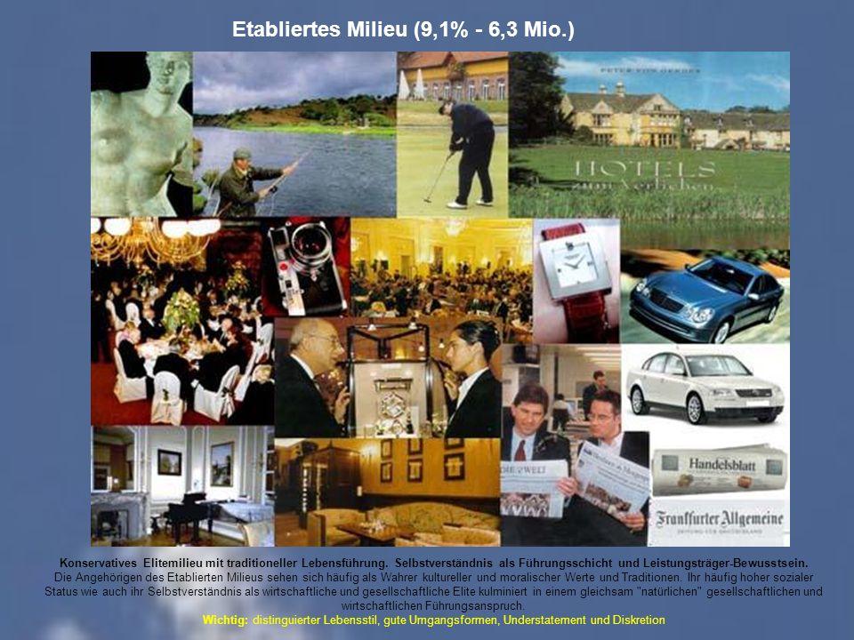 Etabliertes Milieu (9,1% - 6,3 Mio.)