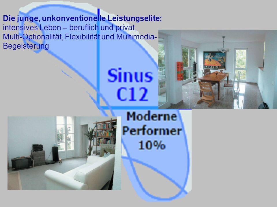 Die junge, unkonventionelle Leistungselite: intensives Leben – beruflich und privat, Multi-Optionalität, Flexibilität und Multimedia-Begeisterung