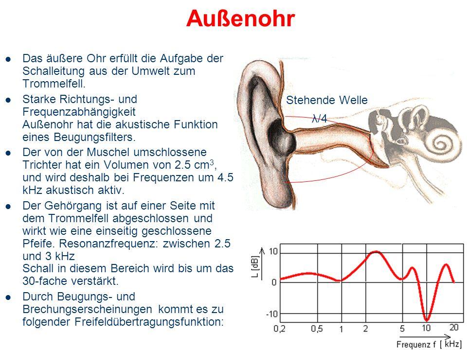 Außenohr Das äußere Ohr erfüllt die Aufgabe der Schalleitung aus der Umwelt zum Trommelfell.