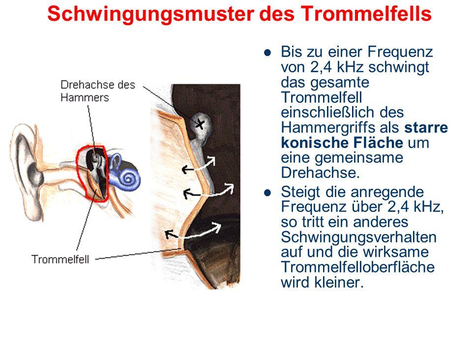 Schwingungsmuster des Trommelfells