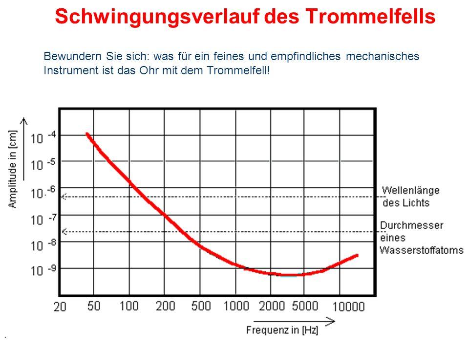 Schwingungsverlauf des Trommelfells