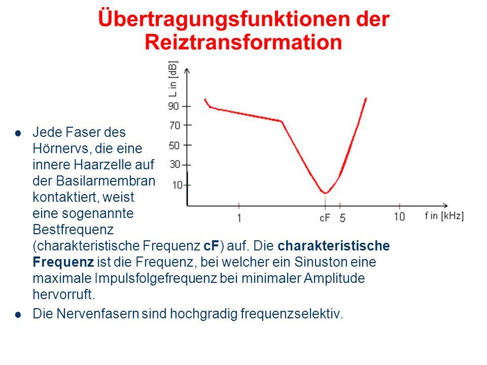 Übertragungsfunktionen der Reiztransformation