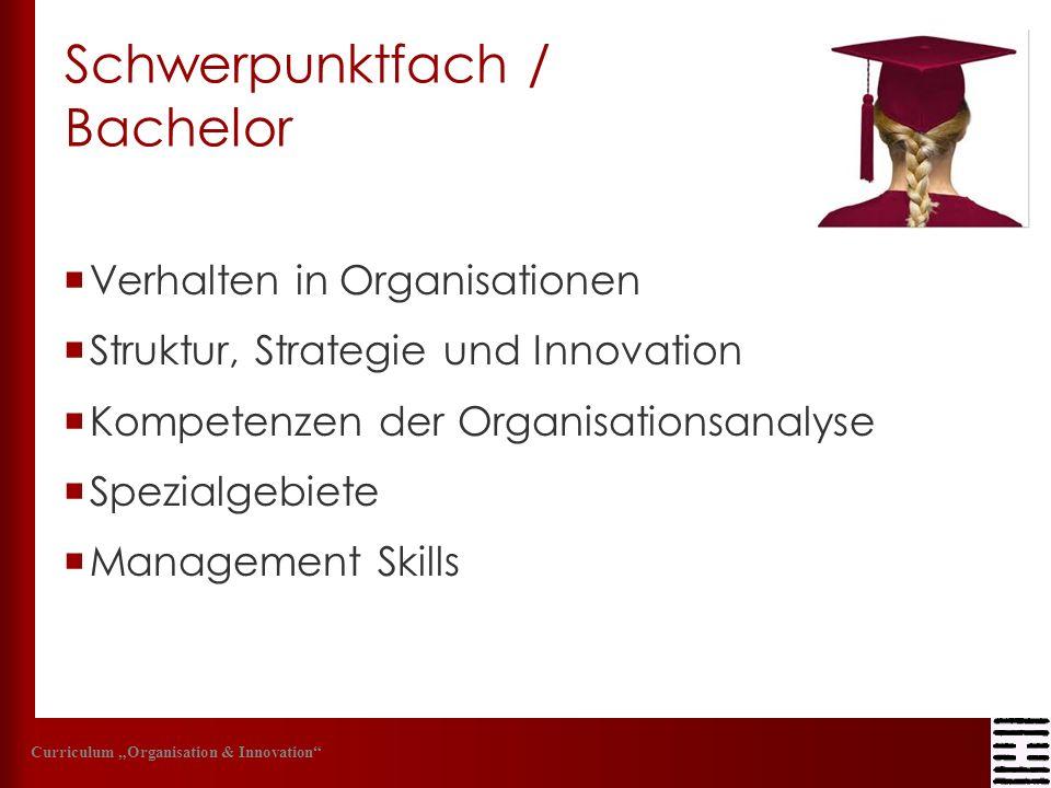 Schwerpunktfach / Bachelor