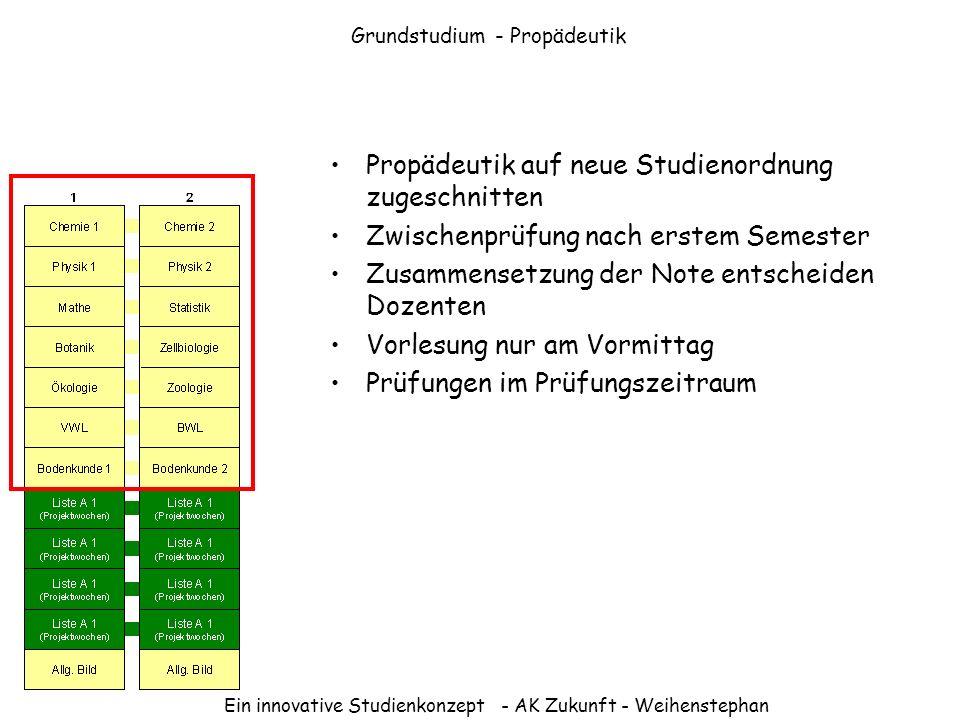 Grundstudium - Propädeutik