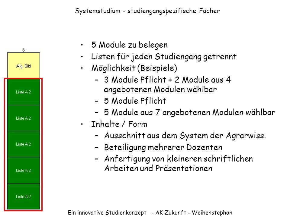 Systemstudium - studiengangspezifische Fächer