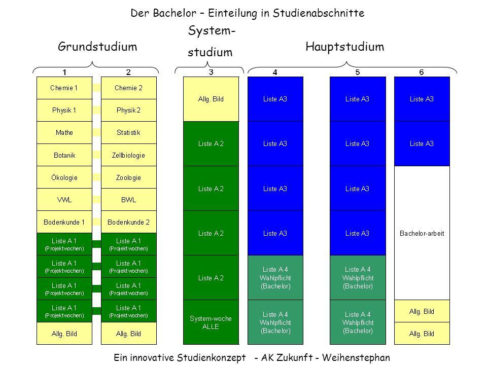 Der Bachelor – Einteilung in Studienabschnitte