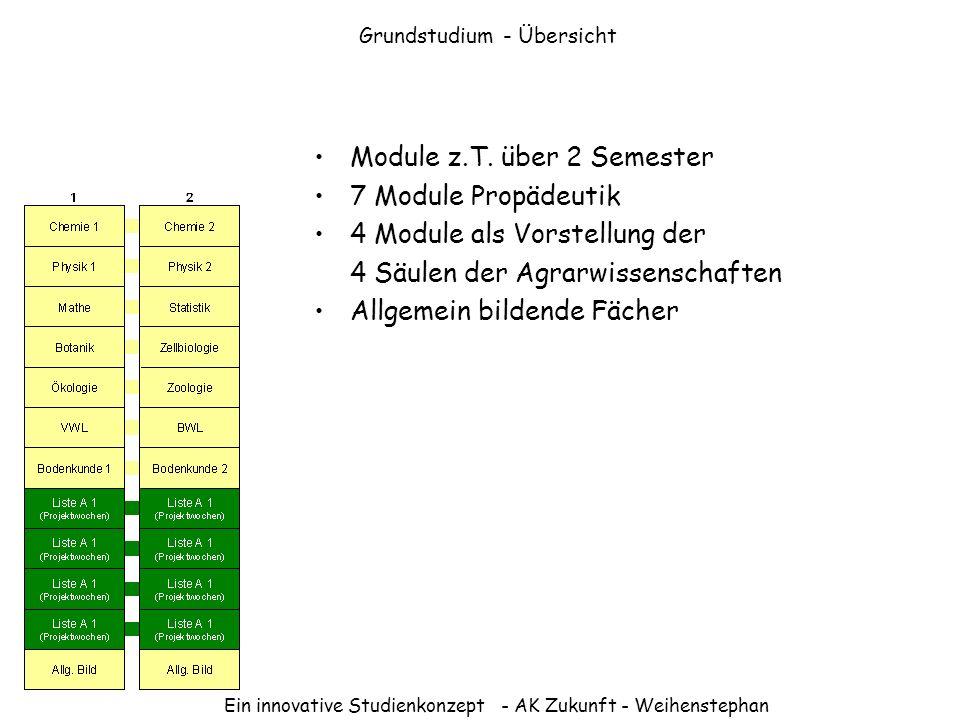 Grundstudium - Übersicht