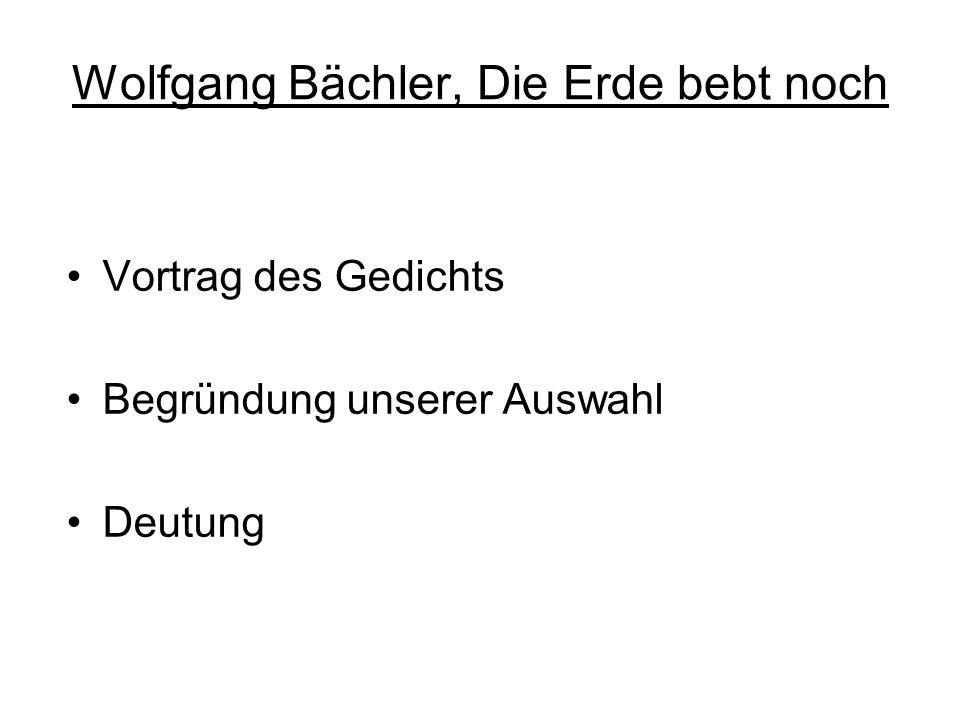 Wolfgang Bächler, Die Erde bebt noch