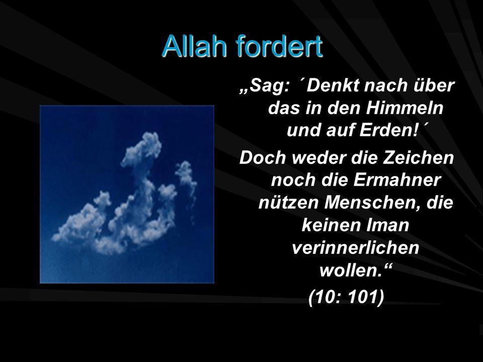 """""""Sag: ´ Denkt nach über das in den Himmeln und auf Erden!´"""