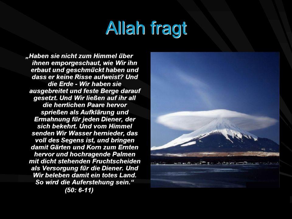 Allah fragt