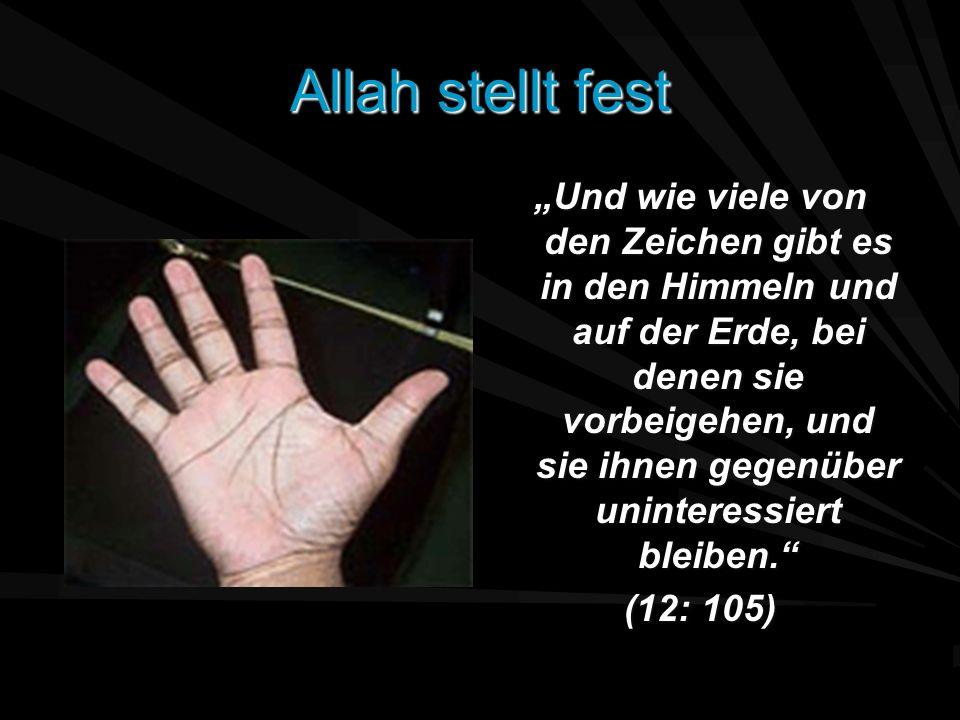 Allah stellt fest