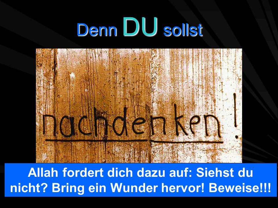 Denn DU sollst Allah fordert dich dazu auf: Siehst du nicht Bring ein Wunder hervor! Beweise!!!