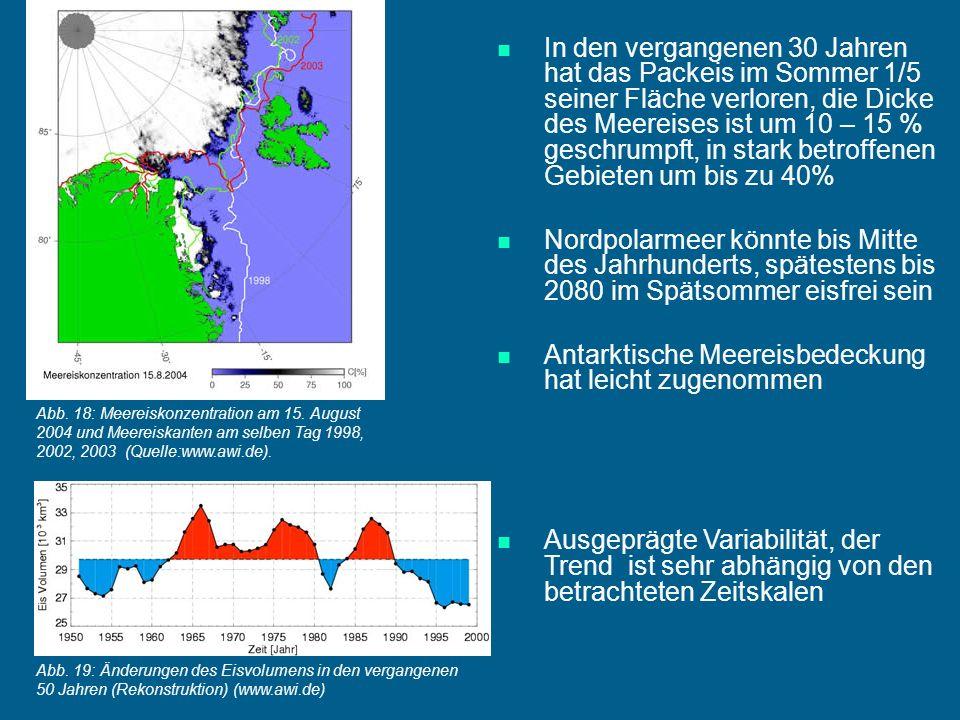 Antarktische Meereisbedeckung hat leicht zugenommen
