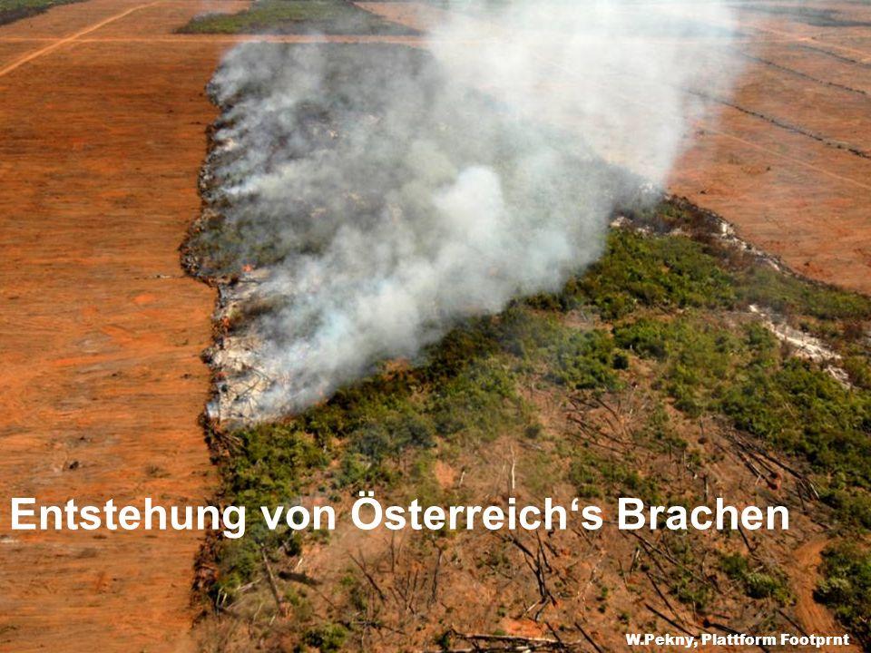 Entstehung von Österreich's Brachen