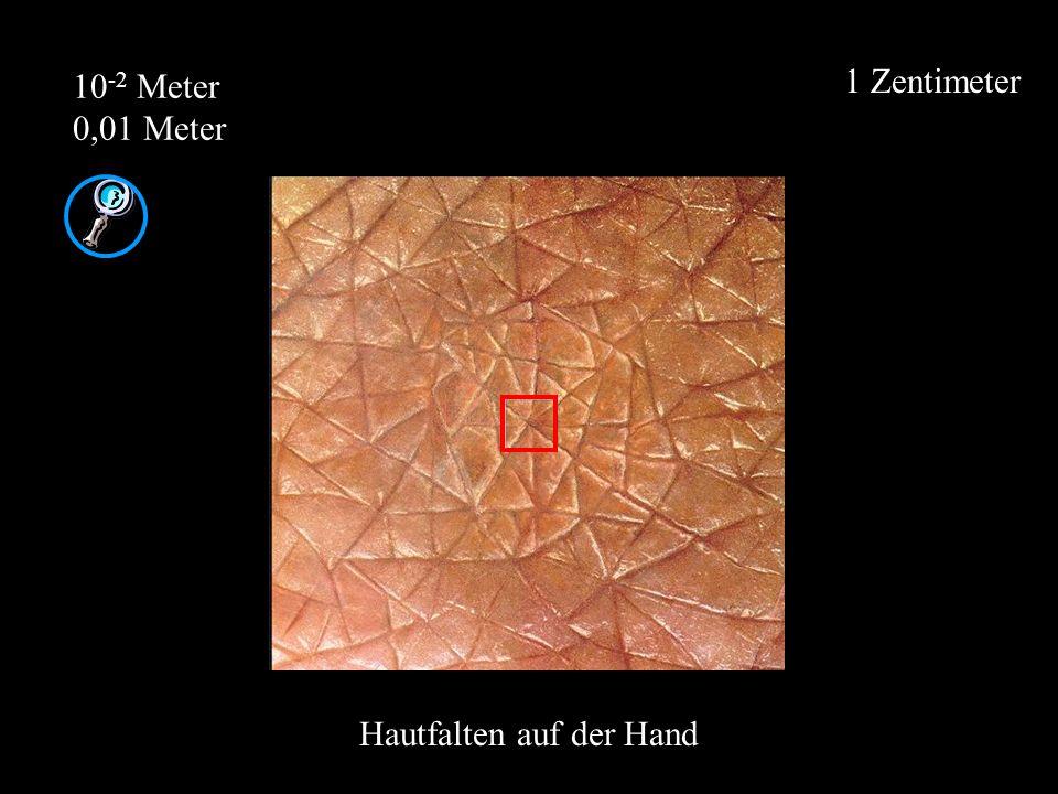 Hautfalten auf der Hand