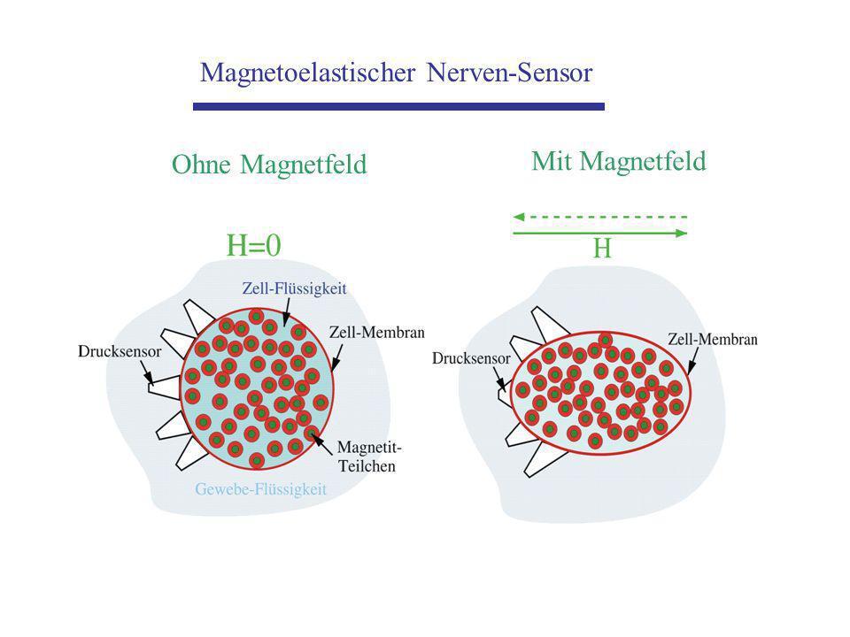 Magnetoelastischer Nerven-Sensor