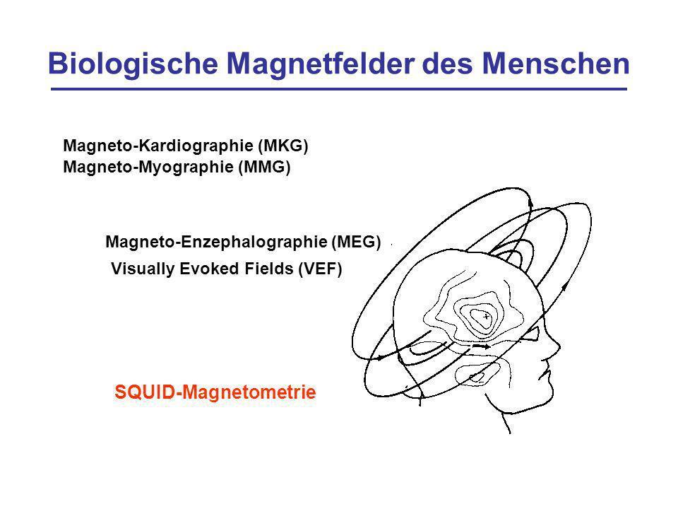 Biologische Magnetfelder des Menschen