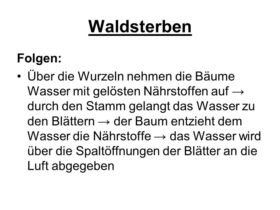 Waldsterben Folgen: