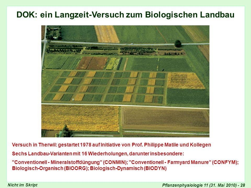 DOK: ein Langzeit-Versuch zum Biologischen Landbau