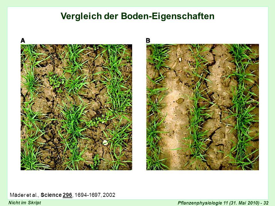 Vergleich Bodeneigenschaften (II)