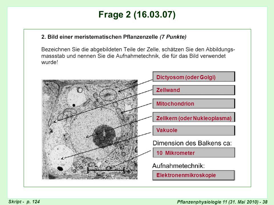 Frage 2 (16.03.07) Dictyosom (oder Golgi) Zellwand Mitochondrion