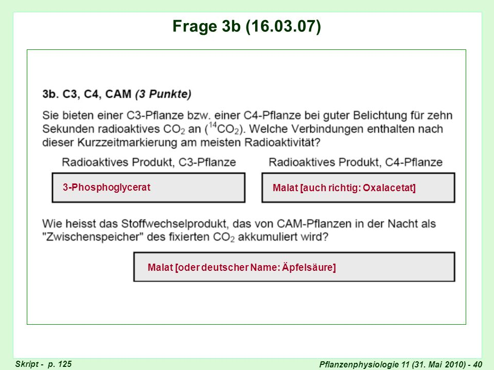Frage 3: CAM-Stoffwechsel