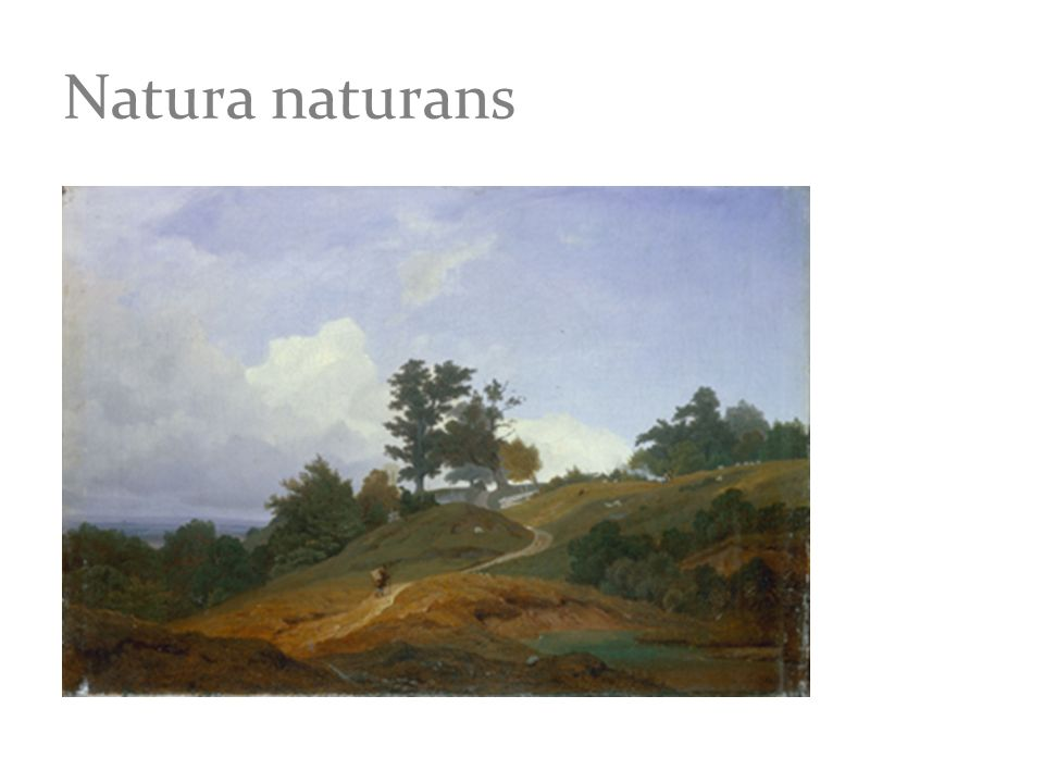Natura naturans