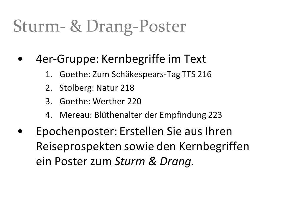 Sturm- & Drang-Poster 4er-Gruppe: Kernbegriffe im Text